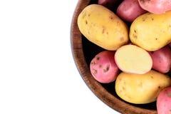 Verse geïsoleerde aardappels Royalty-vrije Stock Foto's