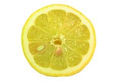 Verse geïsoleerde citroen Royalty-vrije Stock Afbeelding