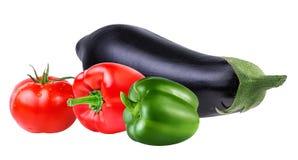 Verse geïsoleerde groenteaubergines, tomaten en Spaanse peper Royalty-vrije Stock Foto's