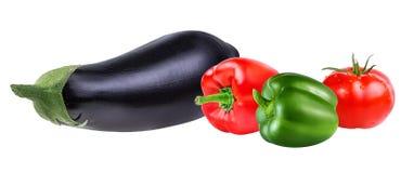 Verse geïsoleerde groenteaubergines, tomaten en Spaanse peper Royalty-vrije Stock Afbeelding