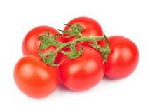 Verse geïsoleerde tomaten Stock Foto's