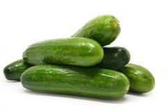 Verse geïsoleerdeR komkommers Royalty-vrije Stock Afbeeldingen