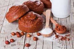 Verse gebakken browny cakes, melk, suiker, hazelnoten en cacao powde Royalty-vrije Stock Afbeelding