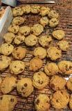 Verse gebakken eigengemaakte chocoladeschilferkoekjes stock afbeelding