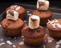 Verse gebakken muffins met heemst en kokosnotenvlokken Stock Foto