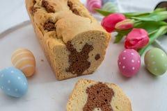 Verse gebakken Pasen Bunny Cake stock afbeelding