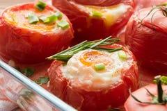 Verse gebakken tomaten met eieren en kruiden royalty-vrije stock afbeeldingen