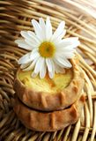 Verse gebakken traditionele pastei met aardappels royalty-vrije stock foto