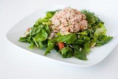 Verse gehakte tonijnsalade royalty-vrije stock foto