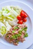 Verse gehakte tonijnsalade met spinazie Stock Afbeeldingen