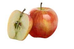 Verse gehele appel en één die in de helft wordt gesneden. royalty-vrije stock afbeelding