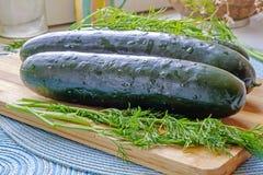 Verse gehele komkommers en lage de kant van het dillelandschap Royalty-vrije Stock Afbeeldingen