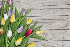 Verse gekleurde tulpen voor een houten achtergrond Stock Afbeelding