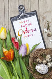 Verse gekleurde tulpen voor een houten achtergrond Stock Afbeeldingen