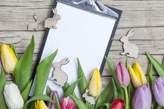 Verse gekleurde tulpen vooraan een houten achtergrond met Paashazen Stock Foto's