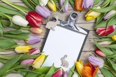 Verse gekleurde tulpen vooraan een houten achtergrond met Paashazen Royalty-vrije Stock Fotografie