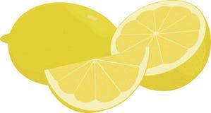 Verse gele citroenen, inzameling van vectorillustratie Stock Afbeeldingen