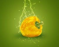 Verse gele groene paprika Stock Foto
