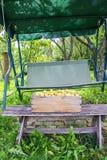 Verse Gele pruimen De rijpe vruchten in een houten doos op tuin slingeren in zonnige de zomerdag stock afbeeldingen