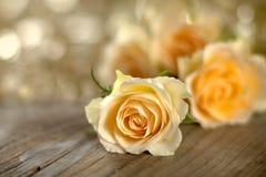 Verse gele rozen op houten raad Stock Afbeeldingen
