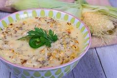 Verse gemaakte die graanvissoep met geroosterd graan wordt gemaakt stock foto