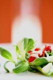 Verse gemengde salade Royalty-vrije Stock Afbeelding
