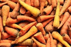 Verse geoogste wortelen stock afbeelding
