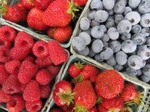 Verse geplukte aardbeien, frambozen en Bosbessen Stock Foto's