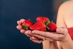 Verse geplukte aardbeien in handen Stock Foto
