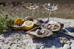 Verse geplukte oesters op overzeese kust met zilveren glazen Stock Fotografie