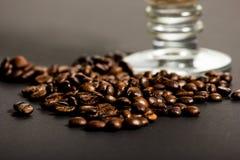 Verse geroosterde koffiebonen Royalty-vrije Stock Afbeelding