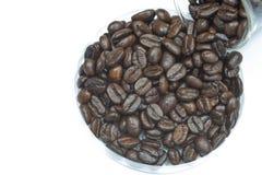 Verse geroosterde koffiebonen Stock Afbeelding