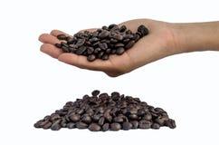 Verse geroosterde koffiebonen in handen Stock Foto