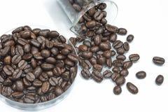 Verse geroosterde koffiebonen in plaat Stock Foto