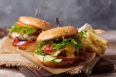 Verse geroosterde rundvleeshamburger en frieten Royalty-vrije Stock Foto's