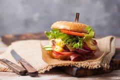 Verse geroosterde rundvleeshamburger en frieten Royalty-vrije Stock Fotografie