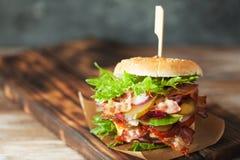 Verse geroosterde rundvleeshamburger en frieten Stock Afbeeldingen