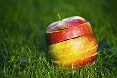 Verse gesneden appelen Stock Foto's