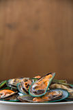 Verse gestoomde mosselen in witte kom Royalty-vrije Stock Fotografie