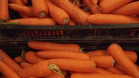 Verse gewassen die wortelen in de lengtevideo van de supermarktvoorraad worden verkocht stock video