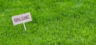 Verse gezonde de lentebanner met Organisch teken royalty-vrije stock foto