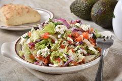 Verse Gezonde Griekse salade royalty-vrije stock fotografie