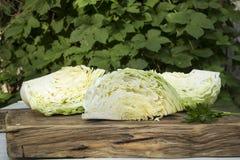 verse gezonde groene groenten royalty-vrije stock foto's