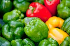 Verse gezonde rode geel geen de macroclose-up van de paprikapeper royalty-vrije stock afbeelding