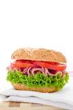 Verse gezonde sandwich Stock Foto's