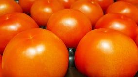 Verse glanzende rijpe rode tomaat op een plank in supermarkt stock afbeeldingen