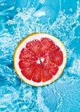 Verse grapefruit stock foto