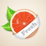 Verse grapefruit vector illustratie