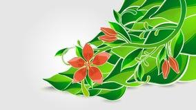 Verse groene achtergrond royalty-vrije illustratie