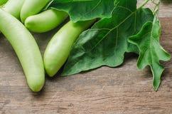 Verse groene aubergine met bladeren op houten lijstachtergrond Royalty-vrije Stock Afbeeldingen